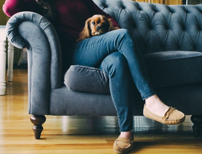 becoming a pet sitter is a great side hustle for millennials